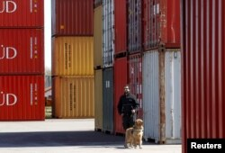 An Argentina tax official and his sniffer dog are shown by containers loaded with grains at the port of Rosario, September 10, 2015. Experts say drugs enter Argentina by truck or plane from Andean cocaine-producing countries to the north.