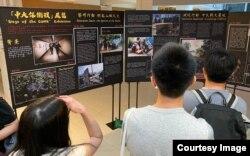 香港中文大学学生会临时行政会秘书马活言表示,学生会去年11月在校园内举办中大保卫战一周年纪念活动,有受到校方一定压力。