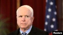 Senator partai Republik, John McCain (Foto: dok).