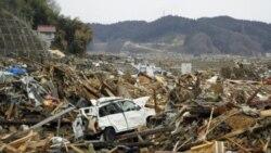 ژاپن در جستجوی جان باختگان سونامی