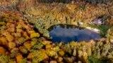 Colorful trees surround the small Hattstein lake in Usingen in the Taunus region near Frankfurt, Wednesday, Oct. 27, 2021.