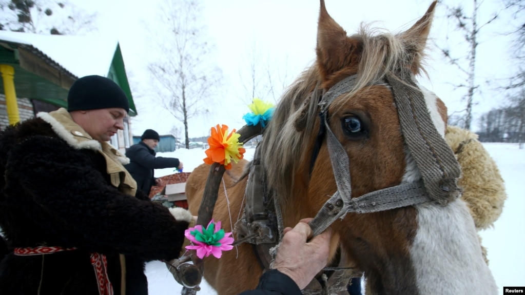 Dont look a gift horse in the mouth in the village of vosava belarus men prepare a horse and a sleigh to negle Images
