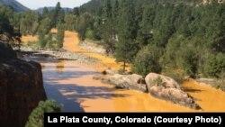 Aguas tóxicas cambian el color del río Ánimas en el Condado La Plata, estado de Colorado.