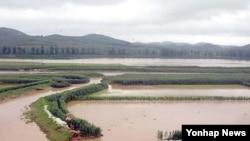 지난달 29일 내린 폭우로 살림집들과 농경지가 침수된 남포시.