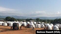 Baqattoota Oromoo Sololoo,Keenyaa jiran