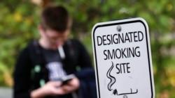 Quiz - Smoking Rates Around the World