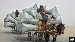 Người Uighur cưỡi xe ngựa đi giao cỏ trong một cơn bão cát ở sa mạc Paklamakan, 100 km về phía đông Yecheng trong khu vực Tân Cương