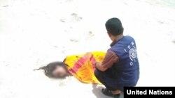 Staf Badan Migrasi PBB memeriksa jenazah migran di sebuah pantai di Yaman. (Foto: dok).