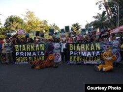 Aksi Profauna Indonesia di Surabaya, memperingati Hari Primata, menolak perburuan satwa liar di alam (Foto: Profauna Indonesia).