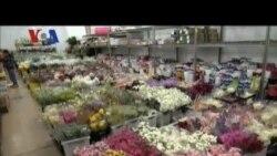 Bisnis Bunga di Hari Valentine
