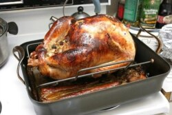 Roasted turkey is the main dish in a traditional American Thanksgiving meal