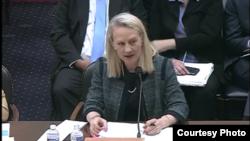 سابق نائب وزیر خارجہ برائے جنوبی ایشیا ایلس ویلز کانگریس کی ذیلی کمیٹی میں سوالوں کے جواب دے رہی ہیں۔