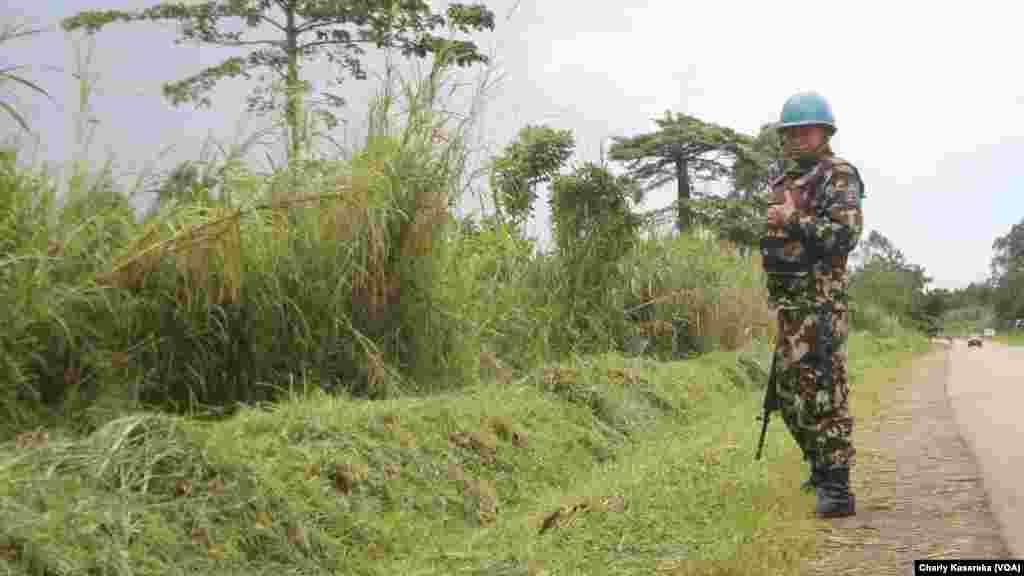 Un Casque bleu de la mission des Nations unies au Congo patrouille à Oicha, Beni, 28 octobre 2015 (Charly Kasereka/VOA).