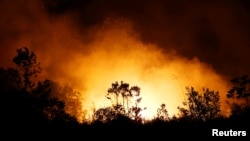 FILE - Trees and peatland are pictured during a fire in Palangka Raya, Central Kalimantan province, Indonesia, September 17, 2019. (REUTERS/Willy Kurniawan)