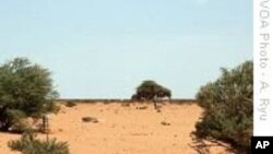 UN: Drought Forcing New Cycle of Human Suffering in Somalia
