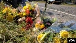 Ramos de flores en Sutherland Springs, Texas, dejados por residentes en el lugar del tiroteo en una iglesia bautista que dejó 26 personas muertas y decenas de heridos. Foto: Gesell Tobías, VOA.