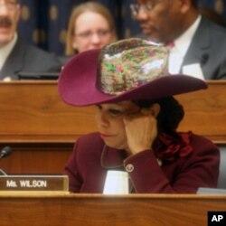 国会听证会上的威尔逊议员