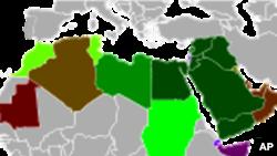 Arapska liga zahtjeva prestanak nasilja u Siriji
