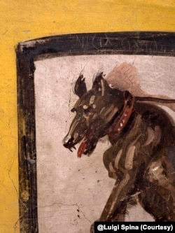 This undated image provided by Pompeii Archaeological Park's press office shows a painting of a dog on a leash at a recently uncovered thermopolium, or fast-food eatery, at Pompeii. @Luigi Spina (Courtesy)