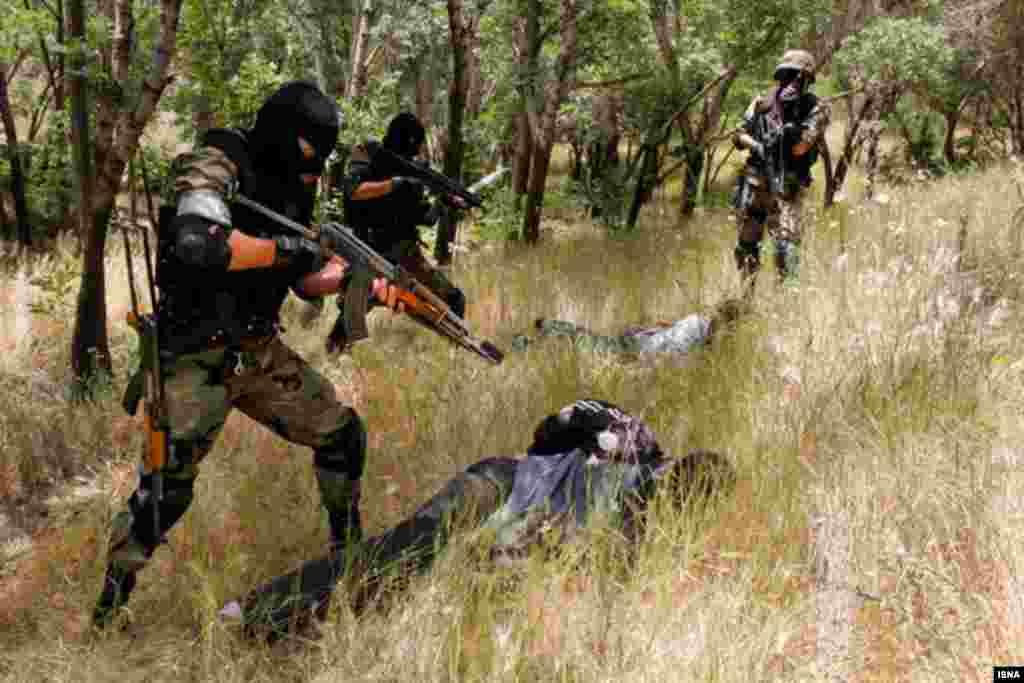 مانور مبارزه با سرقت های مسلحانه توسط نیروی انتظامی در پارک جنگلی ارم استان زنجان برگزار شد. عکس : یونس شکوری، ایسنا