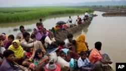 逃离缅甸的罗兴亚穆斯林等候进入孟加拉国难民营