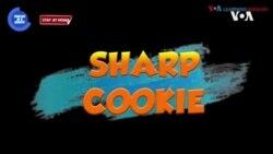 一分钟美语--Sharp Cookie