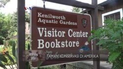 Jalan-jalan ke Taman Air Kenilworth, Annacostia (1)