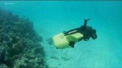 دانشمندان با زیردریایی به نجات صخره های مرجانی می روند