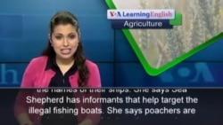 Sea Shepherd Joins Senegal's Campaign Against Poaching