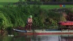 VN cảnh báo tác hại lớn từ các dự án đập ở hạ nguồn Mekong