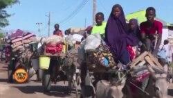 یمن میں افریقی پناہ گزینوں کی حالت زار