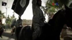 IŞİD'in Yükselişi Mercek Altında