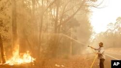 澳大利亞新南威爾士州莫魯亞鎮附近一名男子正在用水龍帶滅火(2020年1月4日)。