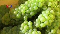 Biz Beat 061815 China Wine