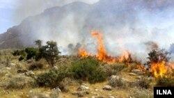 آتش سوزی در جنگل های بلوط پاوه در استان کرمانشاه ایران