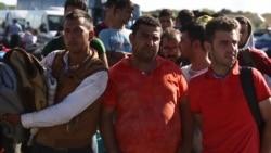 Croatian Town's War History Evokes Empathy for Migrants