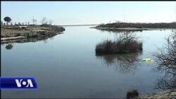 Zonat e mbrojtura lagunore të Shqipërisë