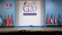 رژه گربه ها در سالن همایش بیست قدرت اقتصادی جهان
