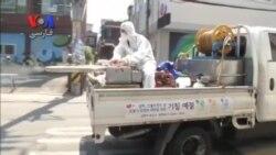 برگزاری نشست اضطراری سازمان جهانی بهداشت و مقام های کره جنوبی برای کنترل مرس