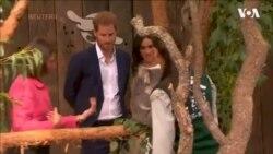 Принц Гаррі з вагітною дружиною Меган подружилися із коалою у новому зоопарку в Сіднеї. Відео