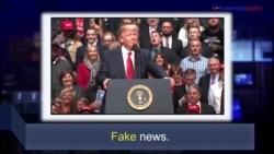 Học từ vựng qua bản tin ngắn: Fake (VOA)