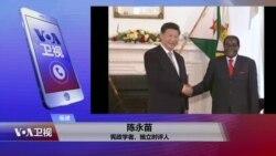 VOA连线:穆加贝是否下台 中国官方民间关注有何不同?