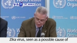 VOA60 World PM - WHO: Zika Virus Spreading Explosively in Americas