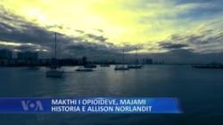 Majami, Historia e Allison Norlandit