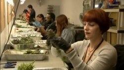 Арканзас - один из 28 штатов, где было легализовано медицинское использование марихуаны