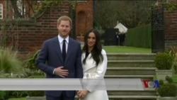 哈里王子与美国女演员马克尔订婚