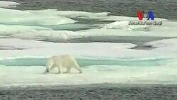 Kuzey Kutbu'ndaki Buzulların Erimesi Ticaret Yollarını Değiştirebilir