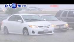 150 người bị kẹt trên xa lộ ở Texas do mưa lớn