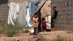 Mosul qaçqınları evlərinə dönməyə tələsmir