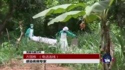VOA连线:埃博拉病毒为何可怕,如何防范?